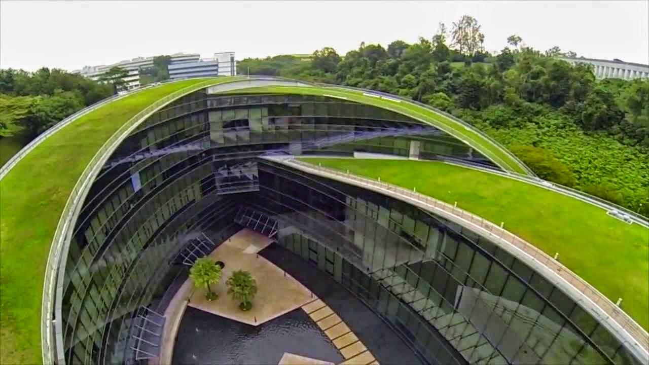 Design Dautore Green Roof Art School In Singapore