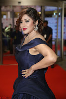 Payal Ghosh aka Harika in Dark Blue Deep Neck Sleeveless Gown at 64th Jio Filmfare Awards South 2017 ~  Exclusive 156.JPG
