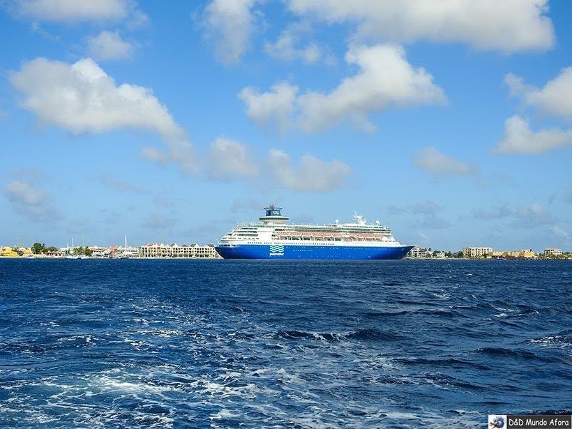 Seguro viagem marítimo: entenda como funciona