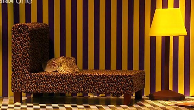 Cuttlefish mimics a living room setup aquarium