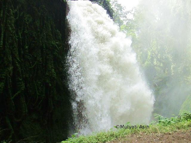 Air Terjun Blawan Bondowoso memiliki debit yang yang begitu deras