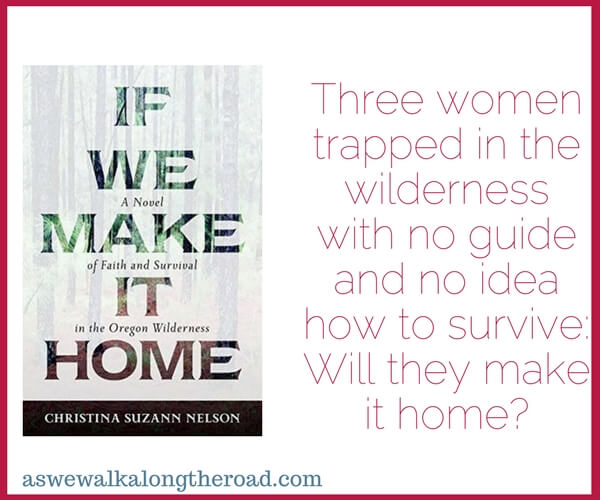Review of If We Make It Home, Christian Fiction