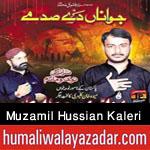 http://www.humaliwalayazadar.com/2015/06/muzamil-hussian-kaleri-nohay-2016.html