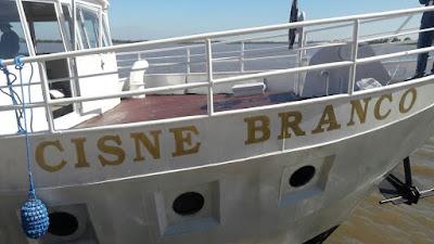 Cisne Branco Porto Alegre 2016