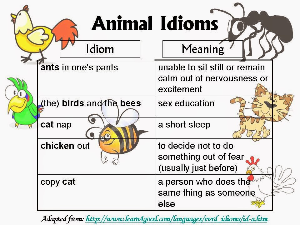 idioms for kids with meaning - photo #2