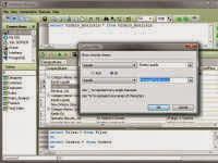SQLite Database Browser Portable