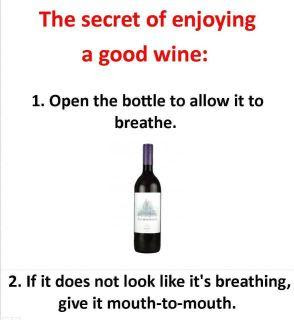 Funny Picture - Secret of enjoying a good wine
