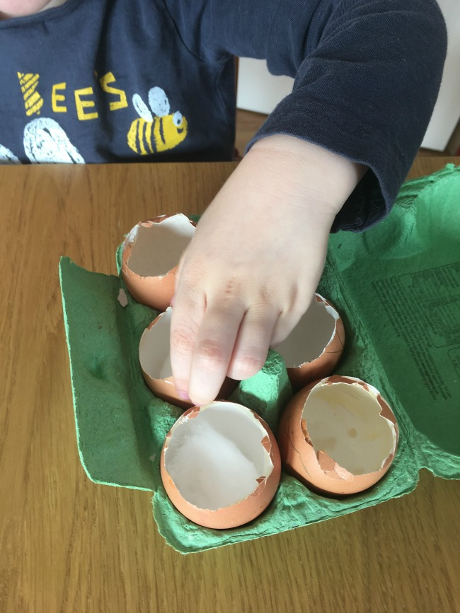 toddlers-hand-sowing-seeds-into-egg-shells