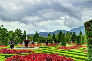 Taman bunga Nusantara adalah sebuah taman bunga yang memiliki luas kurang lebih dari 35 hektar, taman bunga Nusantara berada di kilometer 7 Mariawati Cipanas Cianjur Jawa Barat. Taman bunga Nusantara terletak tidak jauh dari Gunung Pangrango dan juga dari kebun teh puncak