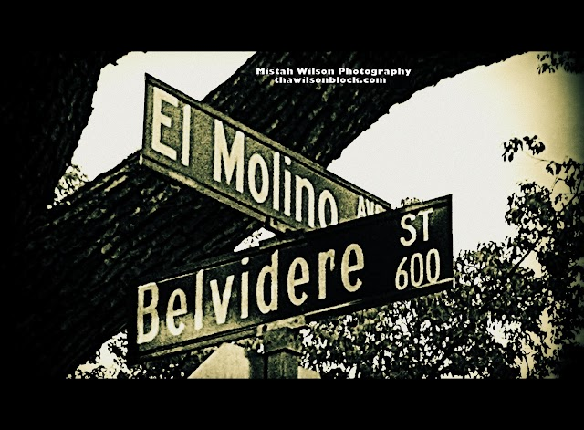 El Molino Avenue & 600 Belvidere Street, Pasadena, California by Mistah Wilson Photography