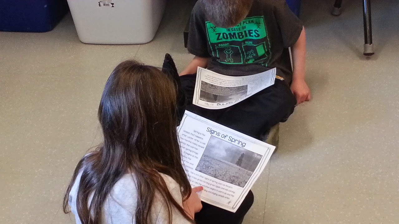 Spring close reading- nonfiction text