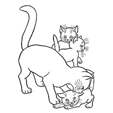 Cute Breast Cats Coloring Pages