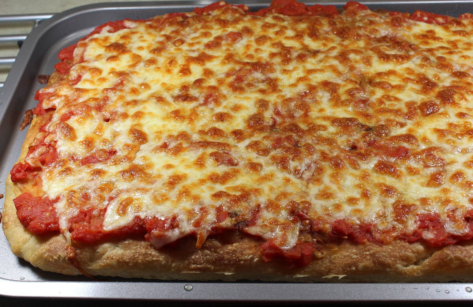 America S Test Kitchen Best Pizza Stone