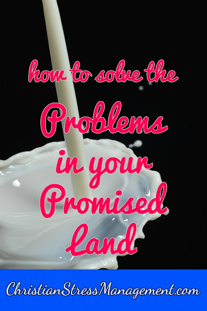 How to Solve the Problems in Your Promised Land