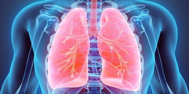 Ketahui 5 Jenis Penyakit Kanker yang Paling Mematikan ini!