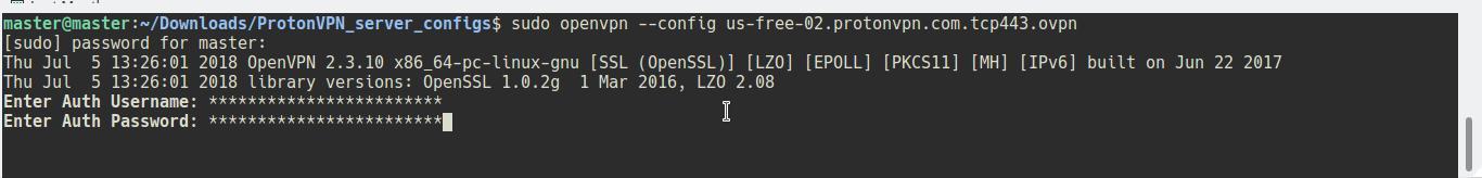 Using ProtonVPN on Ubuntu