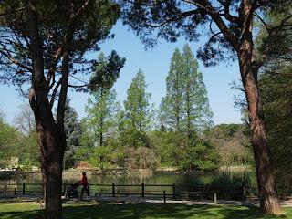 Parco Faenza