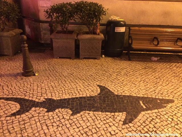 Макао - португальское мощение с рисунком акулы
