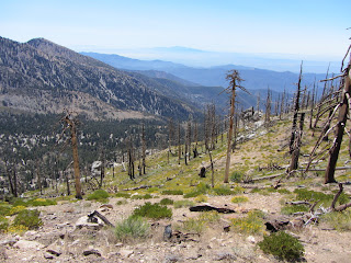View southeast into Crystal Lake Basin from Islip Ridge Trail