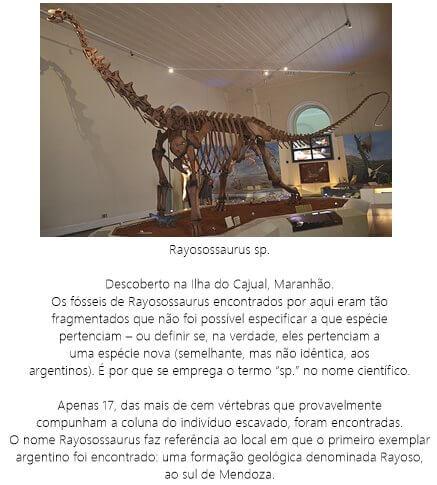 Dinossauro-Rayosossaurus-sp