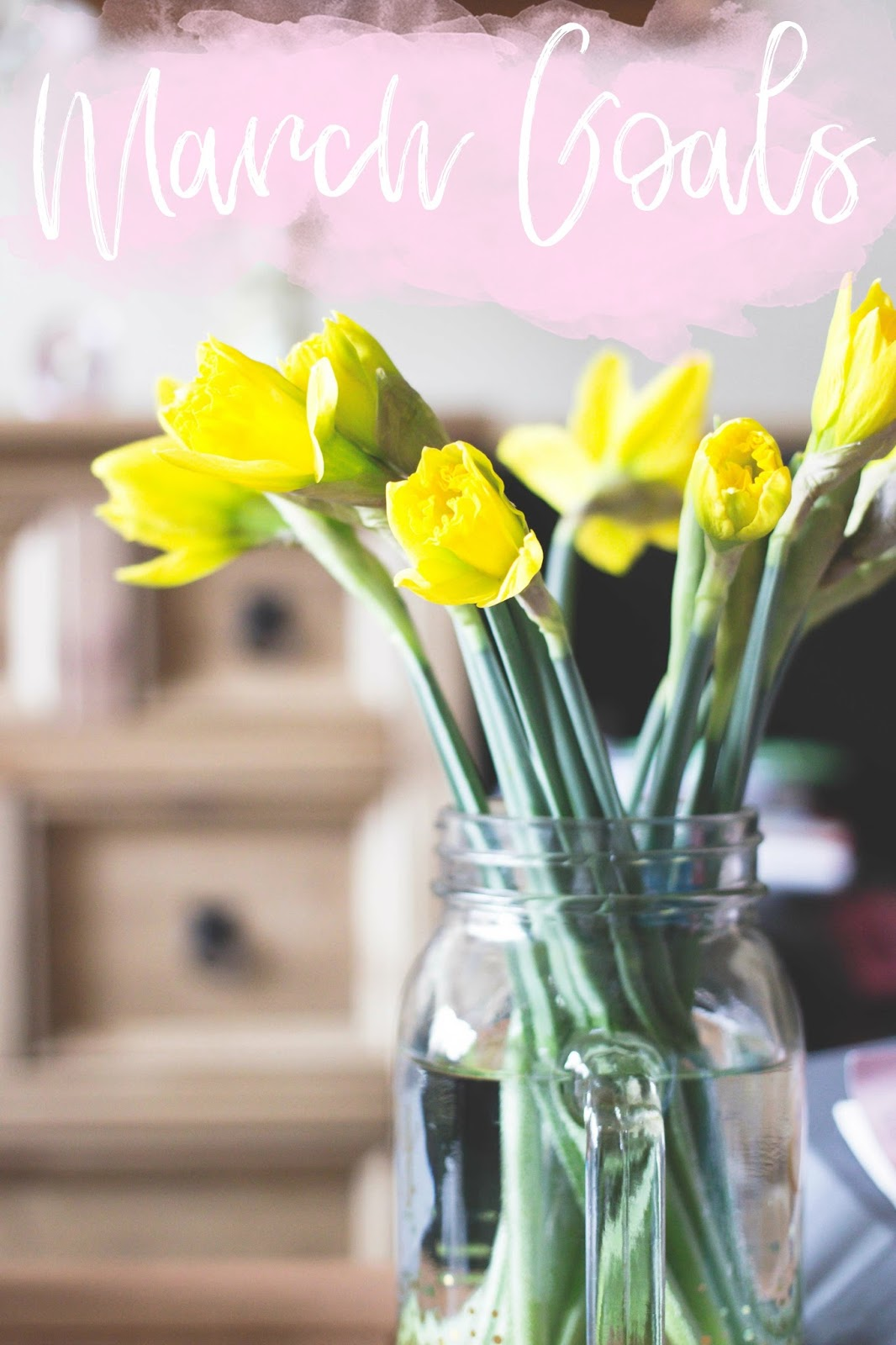 March Goals, Beauty and Lifestyle Blogs, Derbyshire Bloggers, Katie Writes, Daffodils, Derby Bloggers,