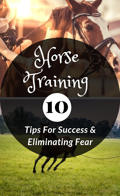 10 Tips For Success and Eliminating Fear