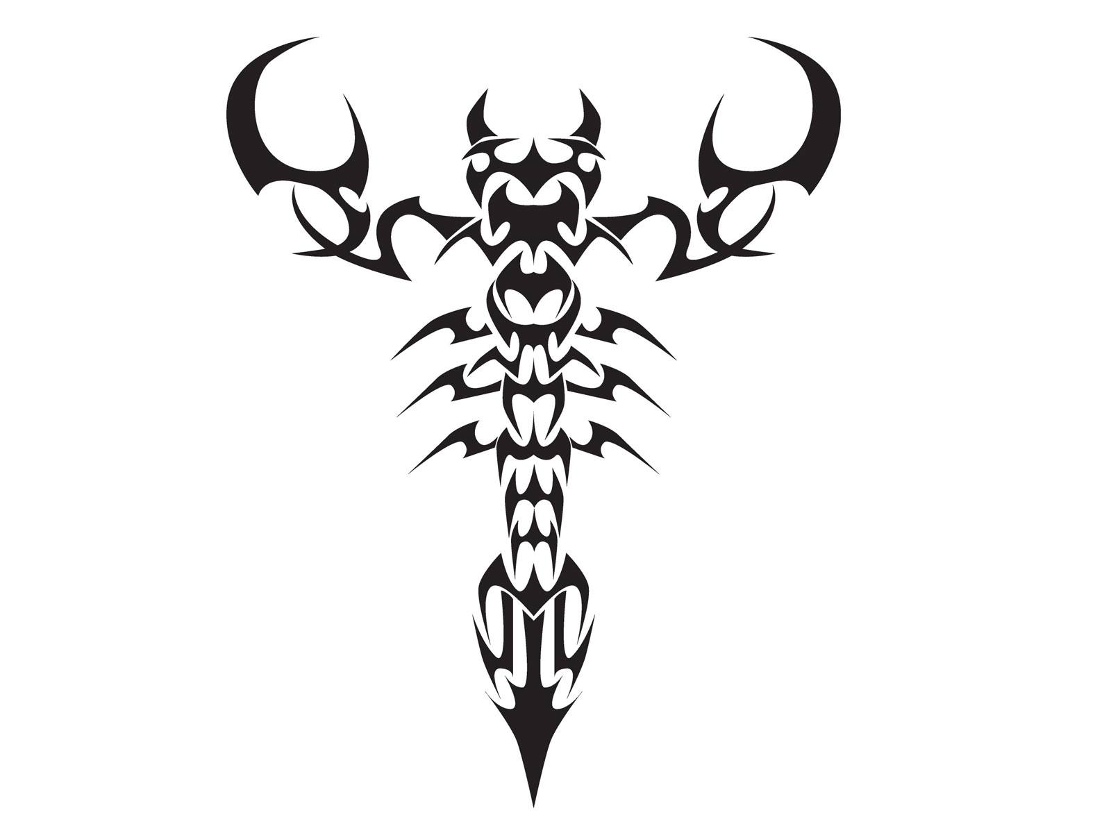 Tribal Tattoo Symbol: Your Scorpio Symbol Tribal Tattoos Sources