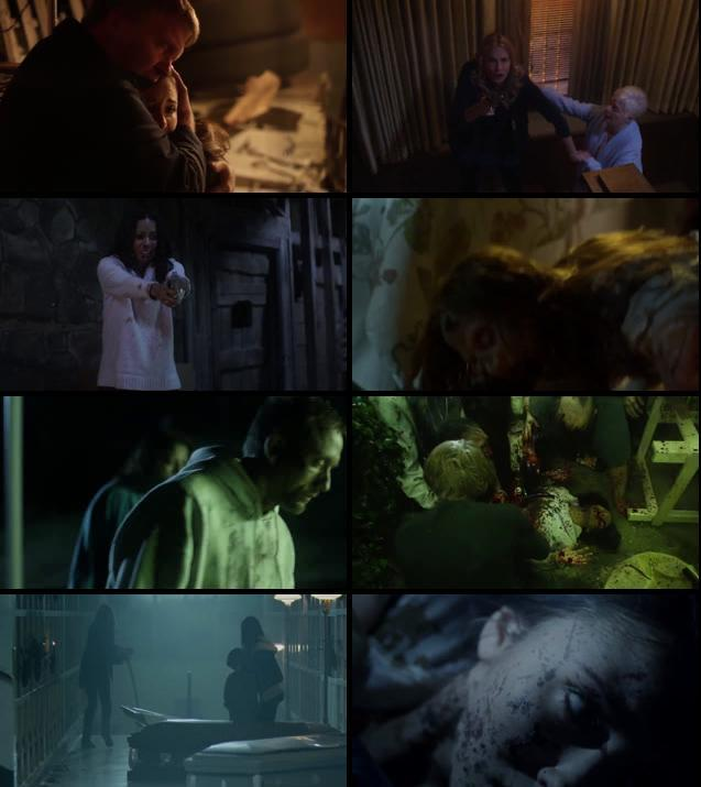 Zombie Night 2013 UNCUT Dual Audio Hindi 720p BluRay