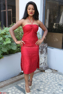 Mamatha sizzles in red Gown at Katrina Karina Madhyalo Kamal Haasan movie Launch event 232.JPG