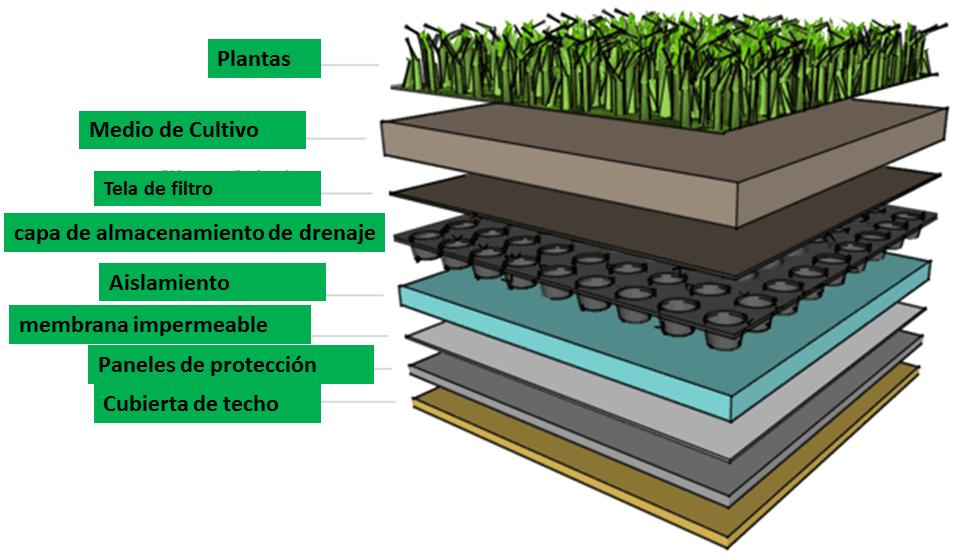 techos verdes como funcionan