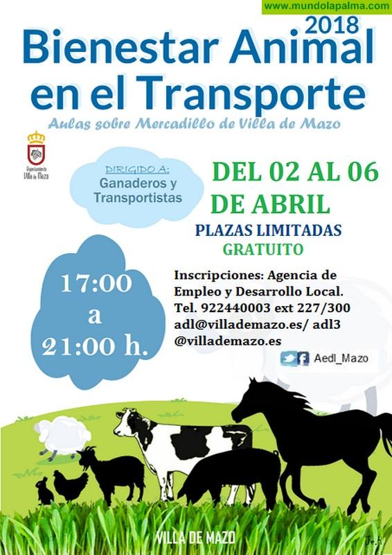 Curso Gratuito Bienestar Animal en el Transporte