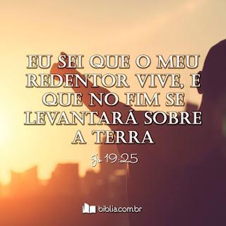 """Jó 19.25 a: """"25 Porque eu sei que o meu Redentor vive..."""" Eliseu Antonio Gomes _ Bíblia Sagrada em Imagens _ rapaz orando sob céu e horizonte em cor amarelado amarelo marrom"""