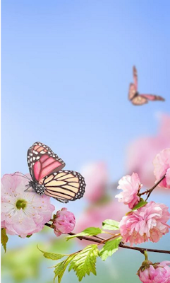 Spring Flowers Live Wallpaper