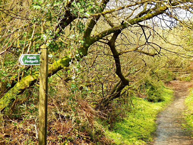 Public Foot Path, Gover Valley, Cornwall