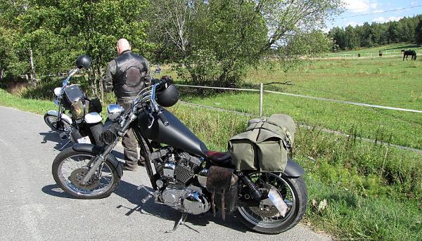 Harley Davidson Sporster 1200 cc chopper