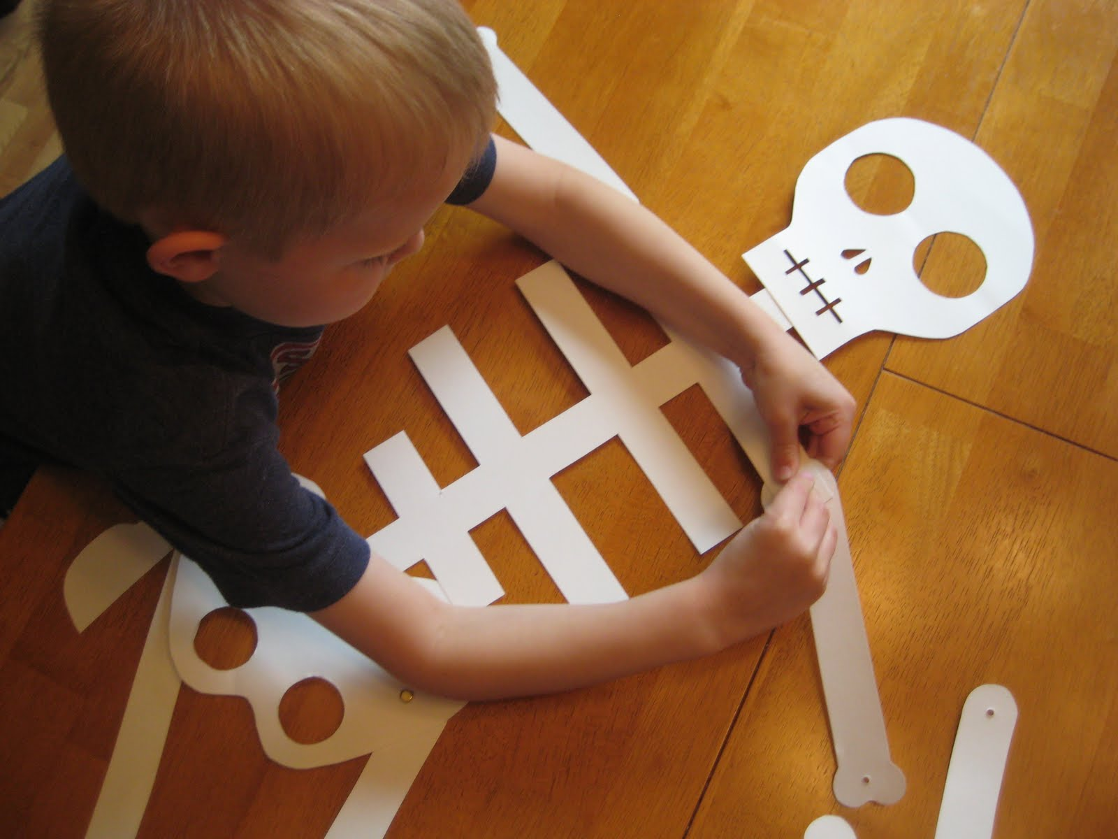 Studying (and Making) Our Own Skeleton