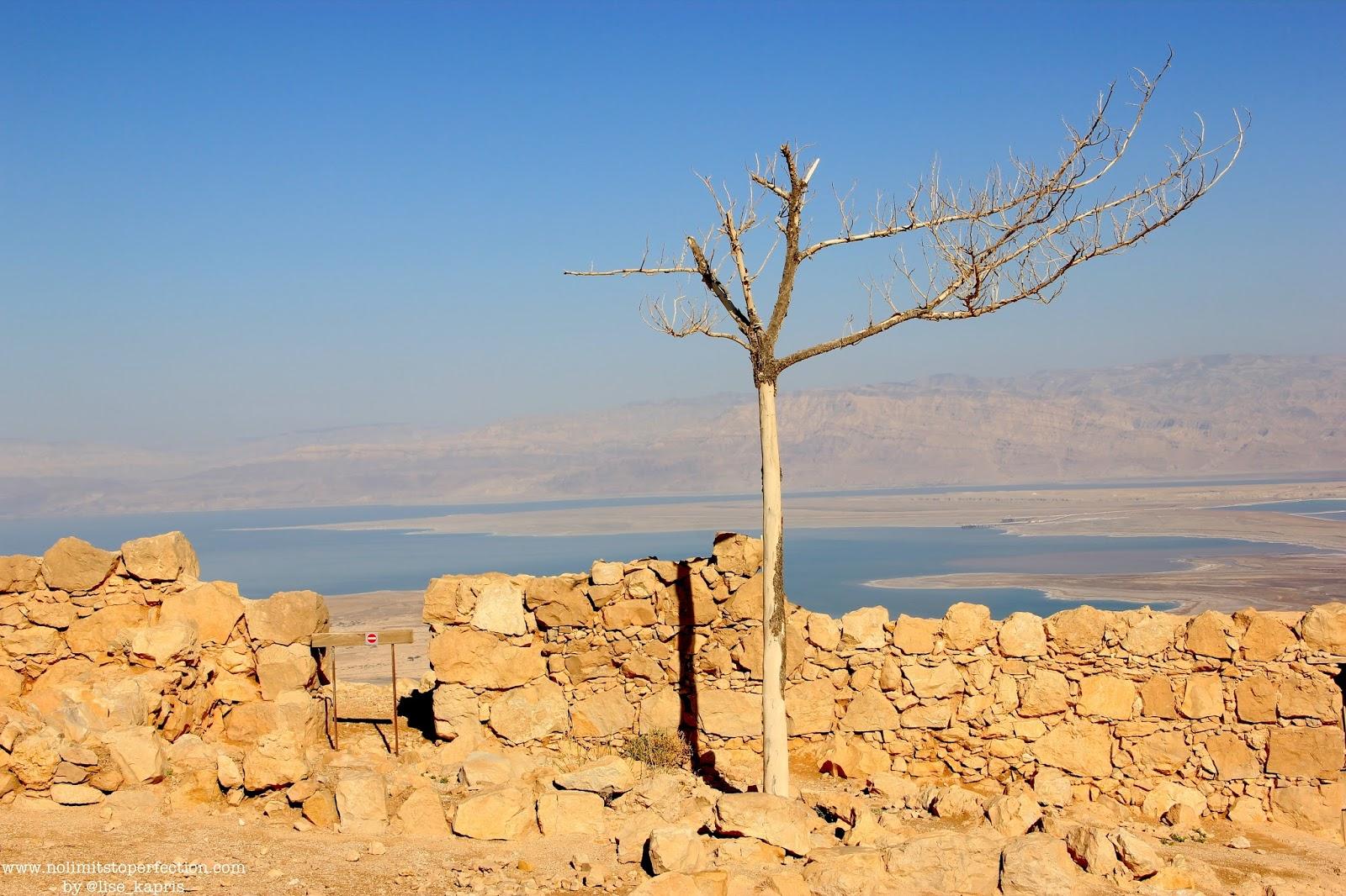 Lise Kapris в Израиле