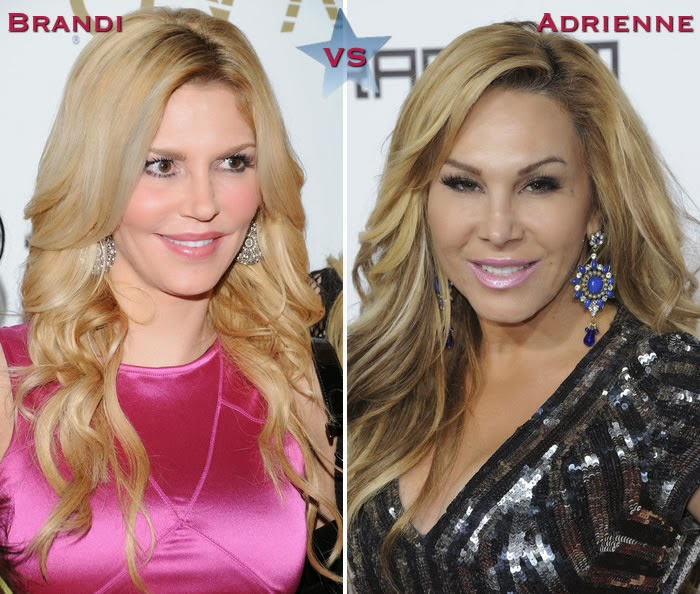 Adrienne Maloof Plastic Surgery Before And After Breast