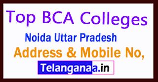 Top BCA Colleges in Noida Uttar Pradesh
