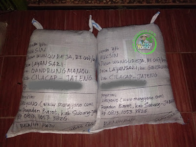 MUKSIN Cilacap, Jateng  (Sesudah Packing)