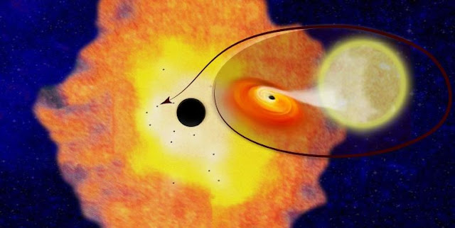 Columbia astrophysicists have discovered 12 black hole-low mass binaries orbiting Sgr A* at the center of the Milky Way galaxy. Their existence suggests there are likely about 10,000 black holes within just three light years of the Galactic Center.
