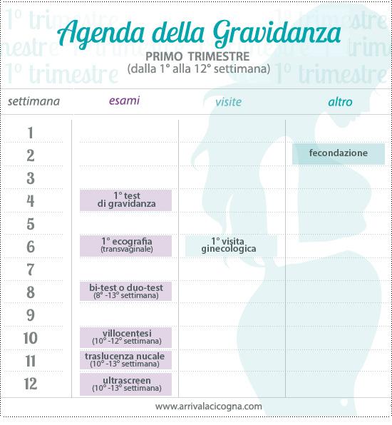 Calendario Delle Settimane Di Gravidanza.Arriva La Cicogna Calendario Della Gravidanza Primo Trimestre