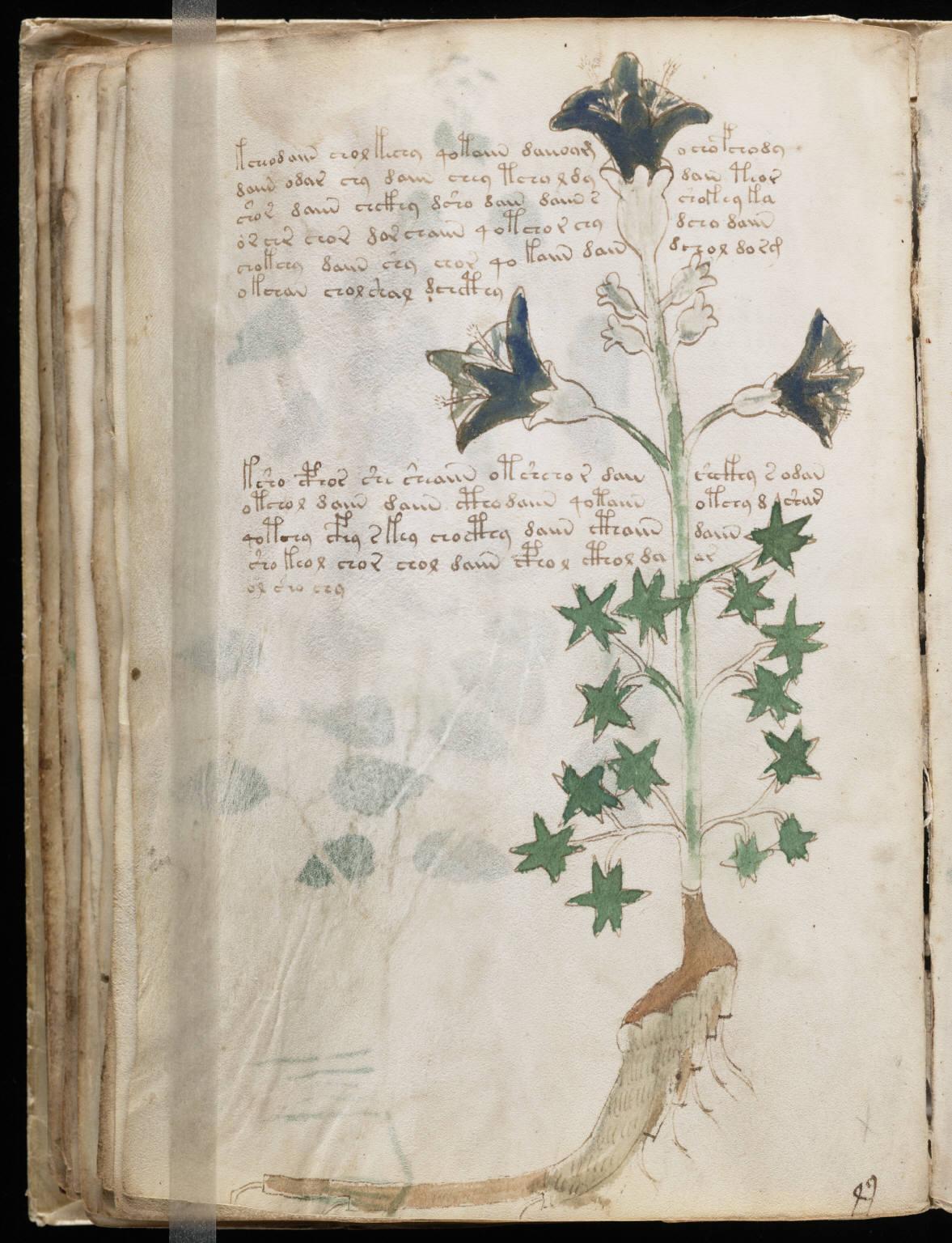 manuscrito062