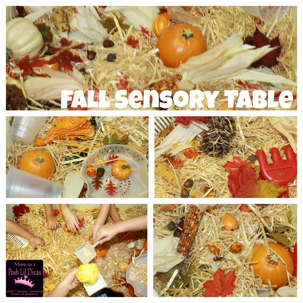Fall Themed Sensory Table