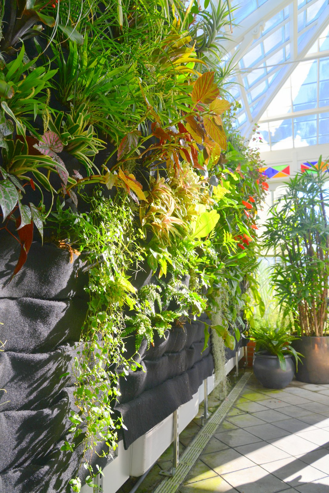 Plants On Walls Vertical Garden Systems: Conservatory Of