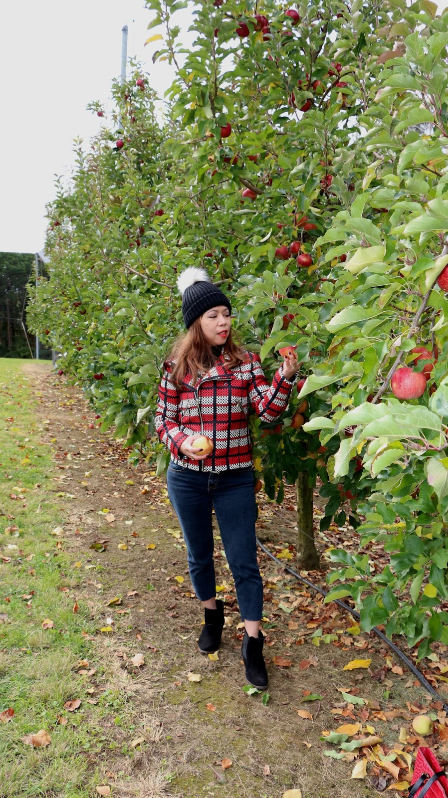 What to wear when picking apples