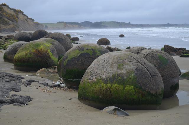 Dia 2 (II): Elephant Rocks, Oamaru, Moeraki Boulders i arribada a Dunedin