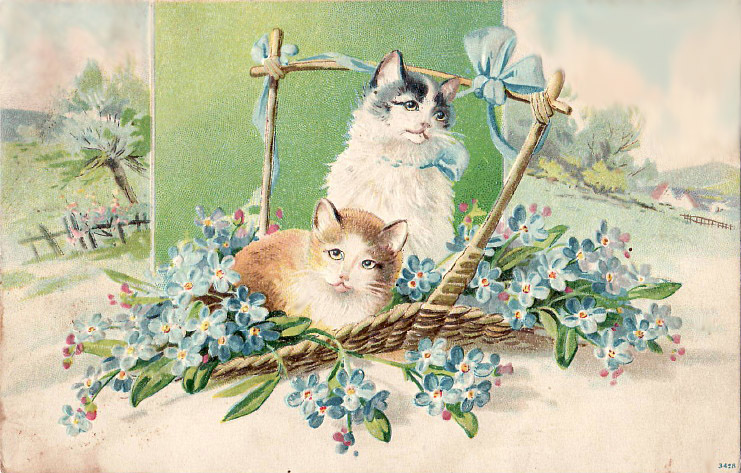 vintage birthday cats cat - photo #7