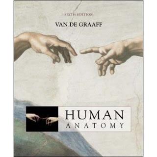 Anatomia Humana Van Graaff Orgaos Do Sentidos