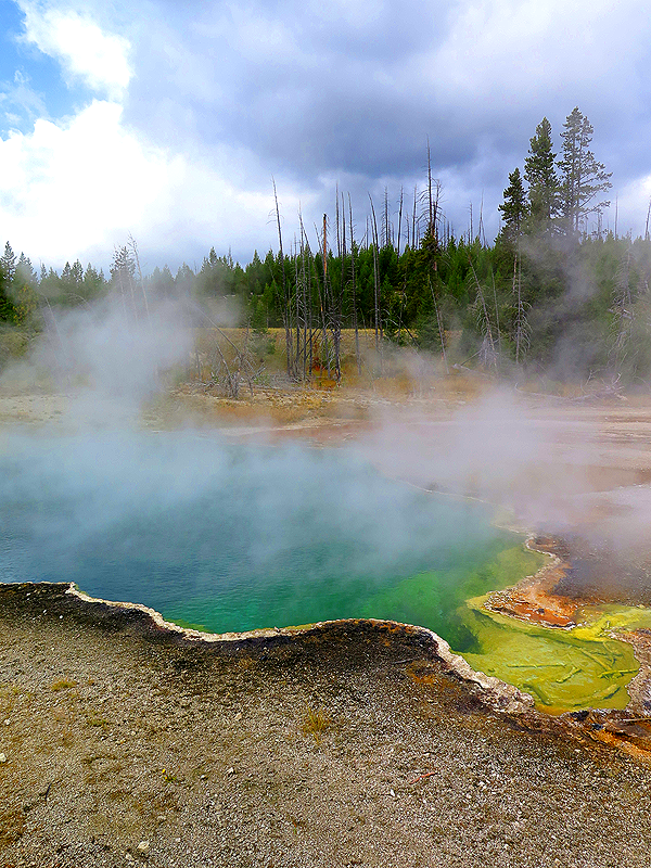 Geyser Basin, West Thumb
